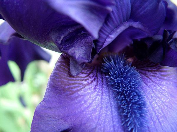 Эрозия шейки матки - причины, симптомы, диагностика и лечение