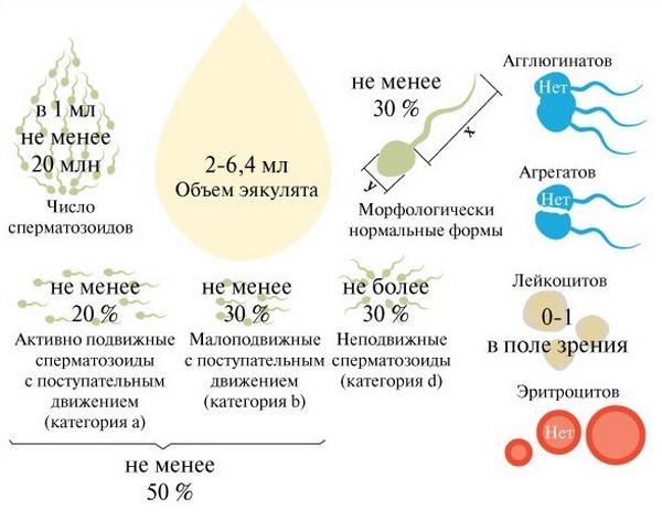 kogda-perviy-raz-proglotila-spermu
