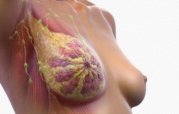 Классификация инвазивного рака