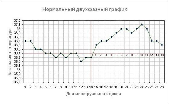 Календарный план-график реализации проекта - projectimo ru