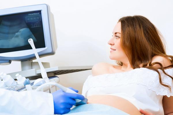 УЗИ на ранних сроках беременности