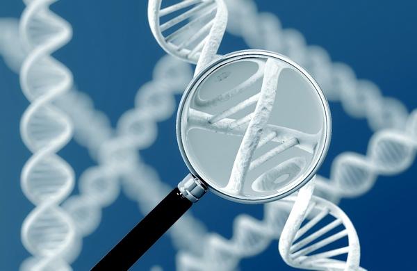 диагностика наличия паразитов в организме человека