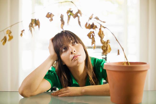 Как народными средствами понизить прогестерон у женщин