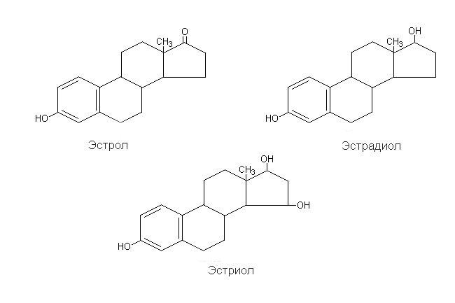 Виды эстрогенов и их структура