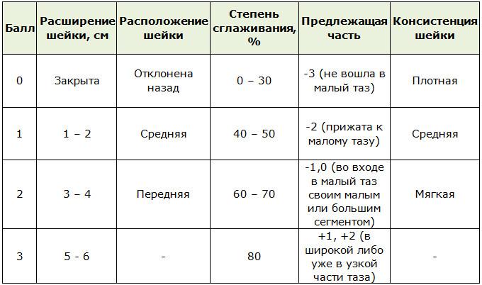 Таблица Бишоп для определения состояния половых органов роженицы для родоразрешения