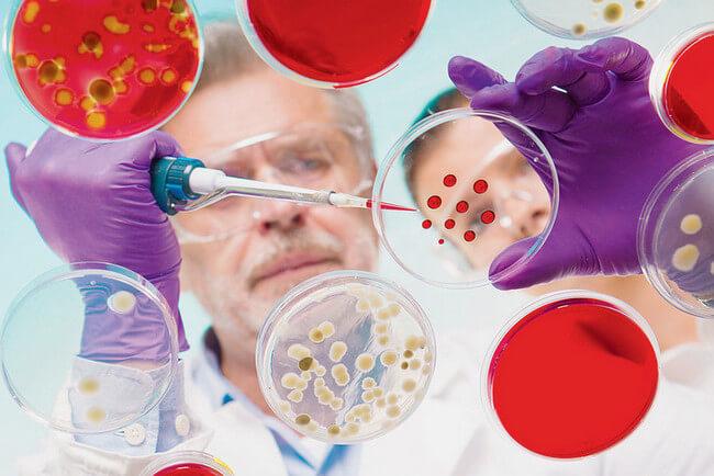 Скрытые инфекции у женщин — Список, симптомы и методы лечения инфекции