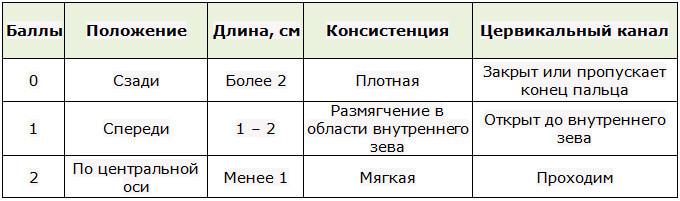 Таблица баллов для определения готовности шейки матки к рождению ребенка